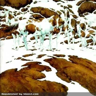 عکس عکس تست هوش اسب  - Bing Bilder عکس جدید