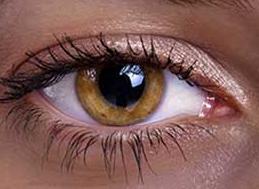 رنگ های نادر چشم 1