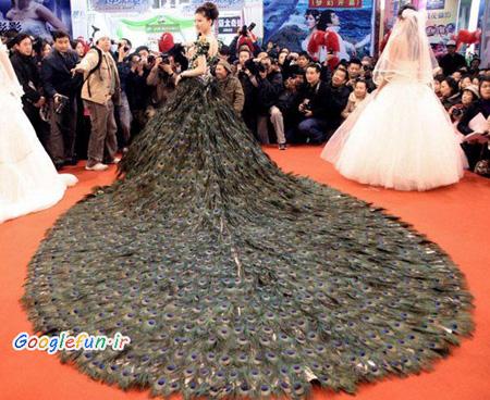 عکس عجیب ترین لباس عروس ها - جالب و تفریحی - انجمن های تاپ گیمز عکس جدید