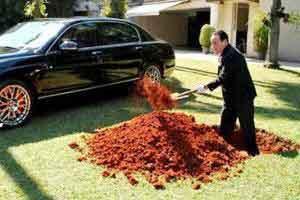 مردی که ماشین چند میلیاردی اش را دفن کرد!!!(عکس) 1
