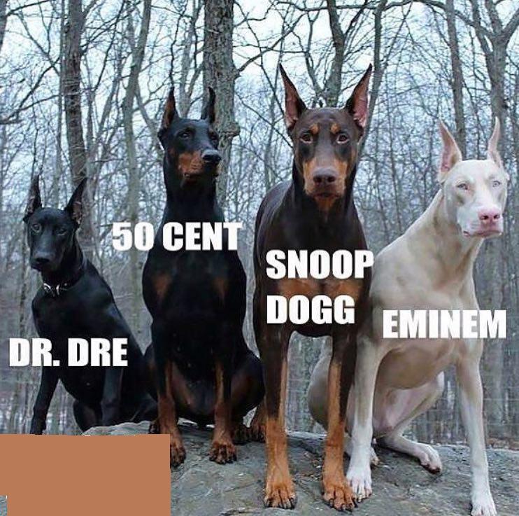 rap fun :D (آپدیت روزانه) 1