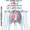 عکس توضیح دستگاه تنفسی - Bing images عکس جدید